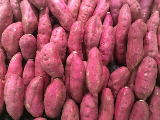 Sweet potato lined up. Pink skinned and presumably pink fleshed too.