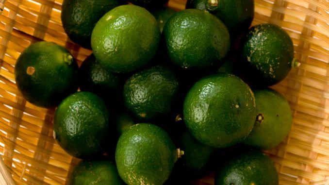 shikuwasa citrus depressa