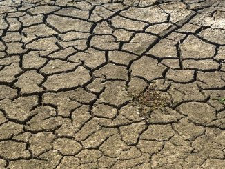 A parched drought ridden pattern. A prelude to famines.