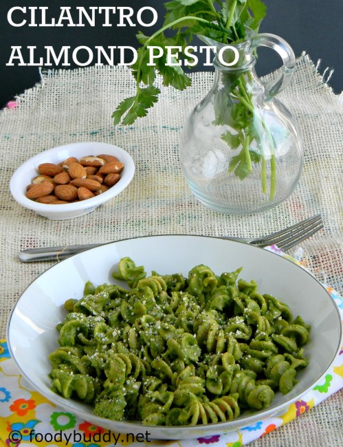 cilantro almond pesto