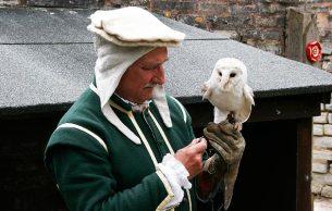 Jan the falconer