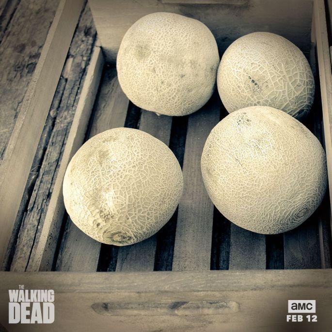walking-dead-melons
