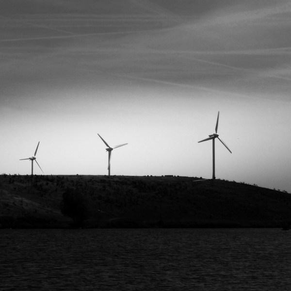 Foto bewerken naar zwart wit met veel contrast