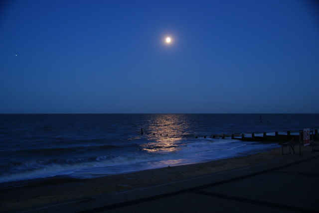 Moonlit beach.jpg