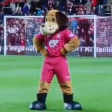 Southampton mascot Sammy Saint dances Gangnam Style at half-time during Southampton v Norwich