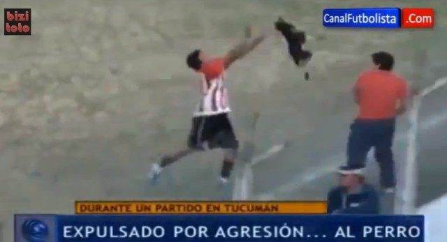 Enzo Jimenez throws dog