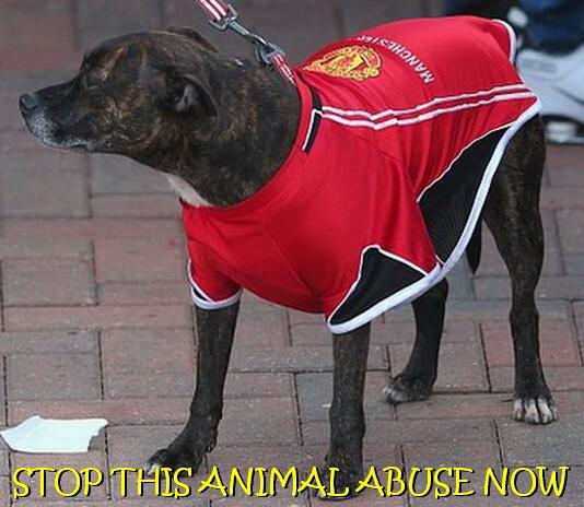 The Best Manchester United Jokes After 2 1 Sunderland Cup Loss
