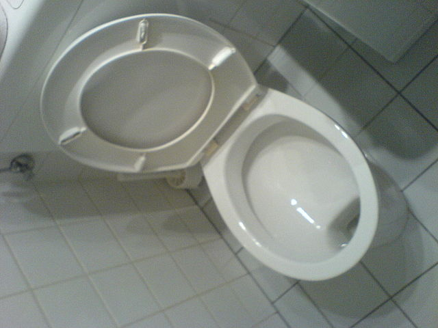 A toilet, as featured in Tweets of the Weekend