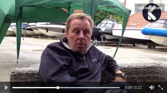 Harry Redknapp attacked by gazebo