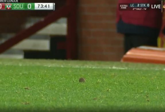 Mouse on pitch at Old Trafford during Manchester United 0-1 Southampton