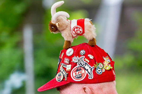 This FC Köln fan may have been at Arsenal