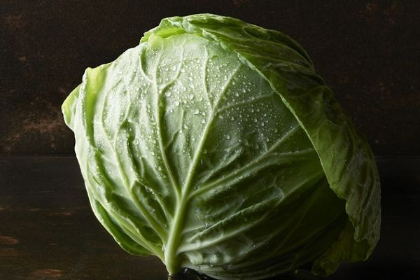 There were various Steve Bruce cabbage jokes, tweets and puns after a fan threw the vegetable at the Aston Villa manager during a match against Preston