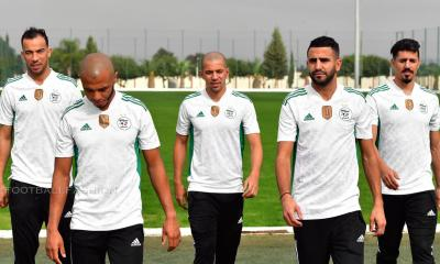 Algeria 2020 2021 adidas Home Soccer Jersey, 2020/21 Football Kit, 2020-21 Shirt, Maillot