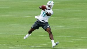 DeVante Parker - Fox News Photo
