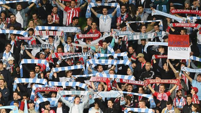 city fans.jpeg
