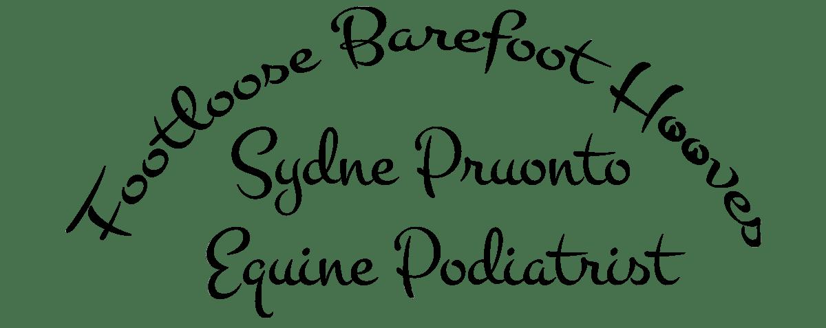 Footloose Barefoot Hooves