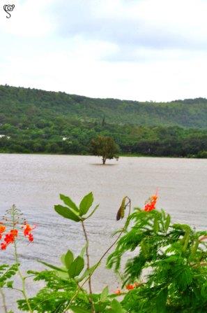 Khadakwasla Reservoir