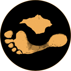 The Footprint Trust