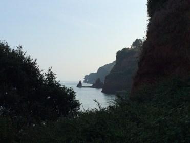 Rock formation near Dawlish