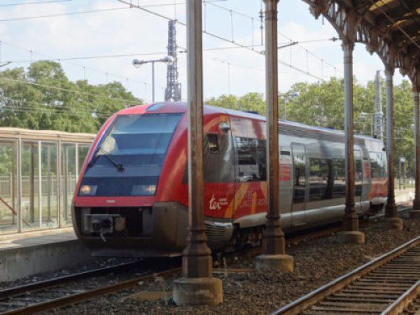 DSC05661