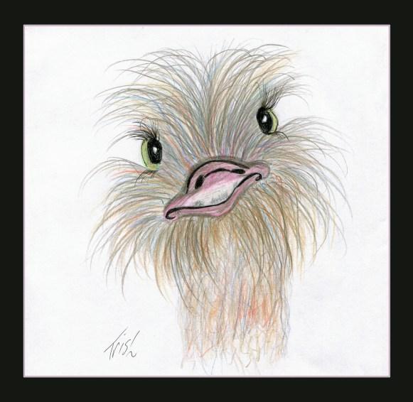 A little Emu that I drew.