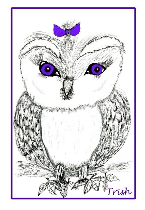 purple owl.