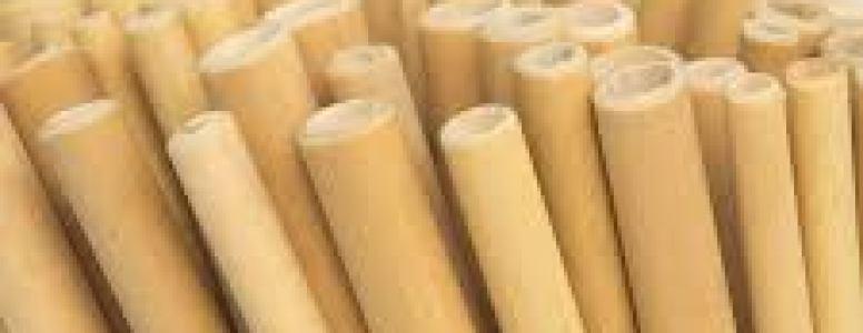 plastic straw | we say no
