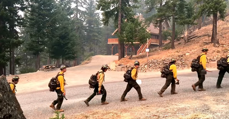 How to Choose the Best Wildland Firefighting Boots