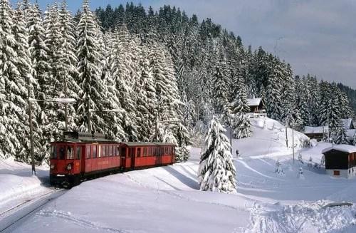 Train na neve