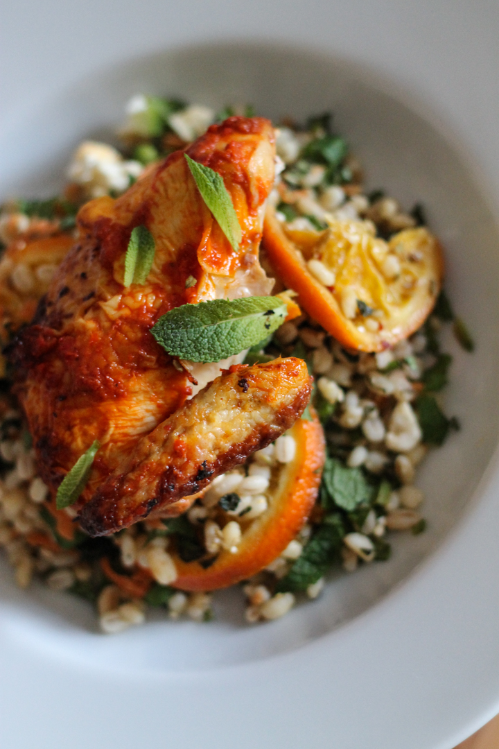 Harissa Chicken With Orange Herb Barley Salad