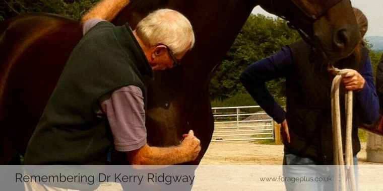 Locating the pectoral point - Dr Kerry Ridgway