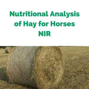 Nutritional-Analysis-of-Hay-for-Horses-NIR.jpg
