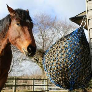 Small Holed Horse Hay Net