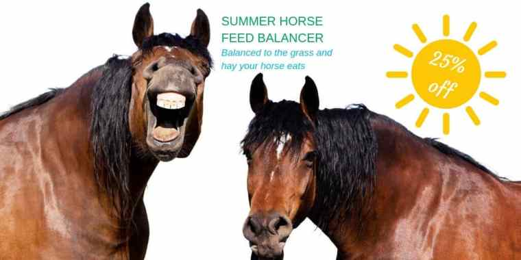 Summer Horse Feed Balancer Forageplus 25% Off