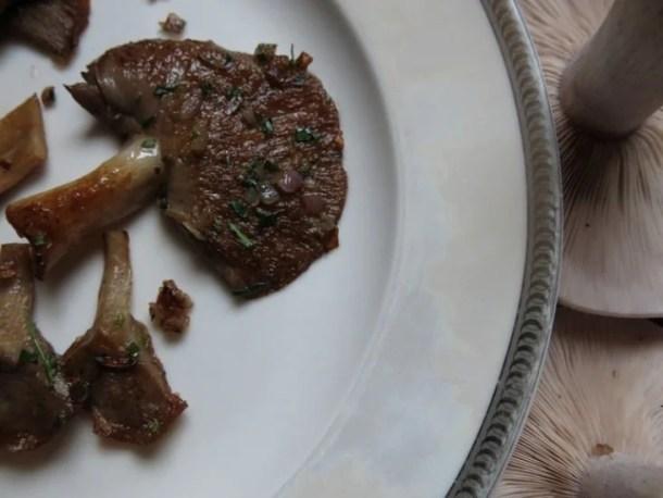 blewit bluefoot mushroom recipe
