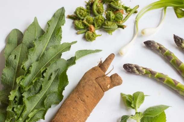 burdock, dock, fiddlehead ferns, ramps, asparagus, peppermint