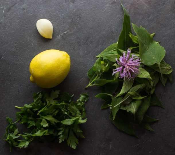 bergamot recipe, wild oregano recipe, bergamot salmoriglio, salmoriglio ingredients,
