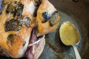 Chicken Demi-Deuil, With Black Truffles_-7