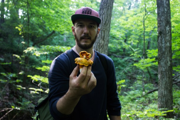 The Hills Have Lobster Mushrooms