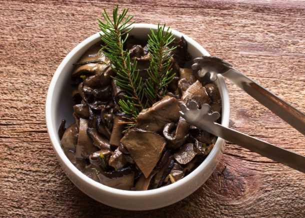 Ischnoderma resinosum conserve