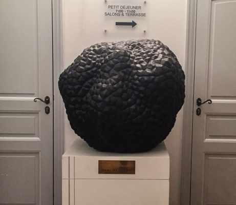 Giant Truffle at Jacques Chibois