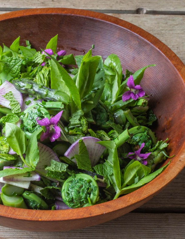 Asparagus Salad with Spruce Tips Violets and Chickweed