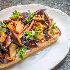 Wild Mushroom Tartine