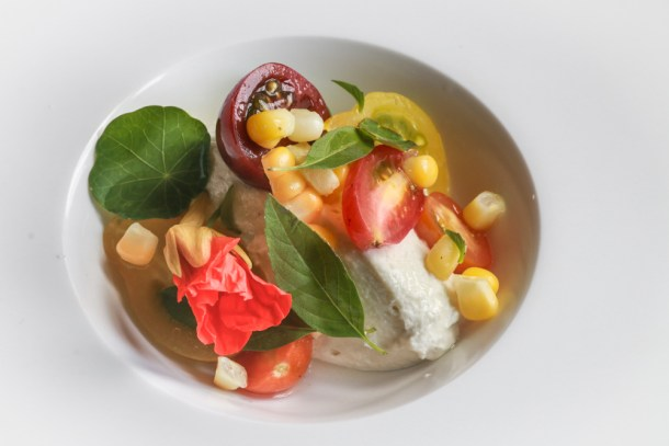 Milkweed Silk Mousse with Summer Vegetables