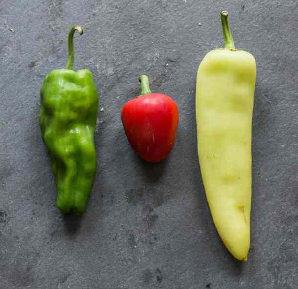 shishito, cherry bomb, and hungarian wax peppers