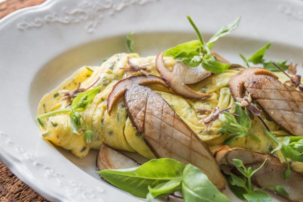 Duck egg-riccota omelet with pine boletes, chickweed, milkweed flowers and herbs ,