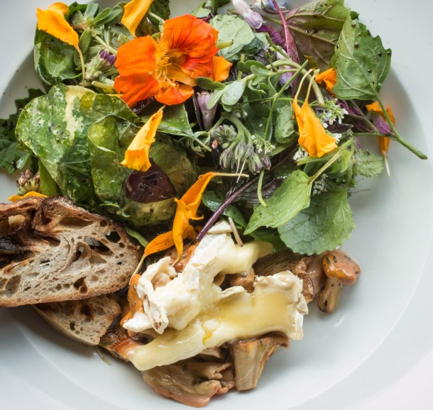 Baked chanterelle mushroom conserve with wild greens and melted brie