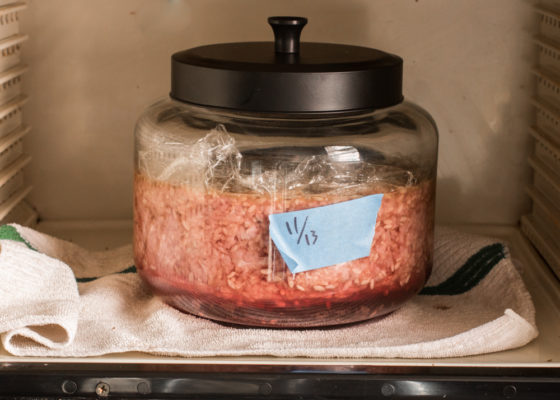 garum made from meat, noma guide to fermentation garum recipe,
