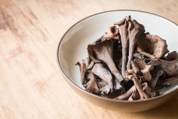 Black trumpet mushrooms 2019