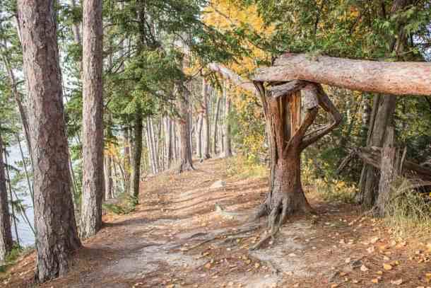hiking on an esker in minnesota